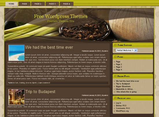 Herbal Medicines WP 1 WordPress Theme